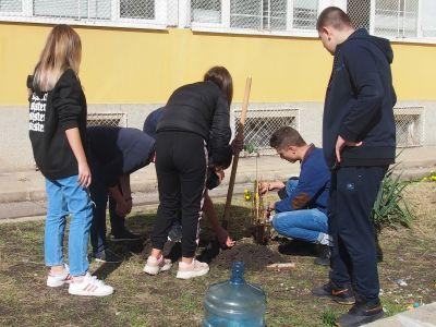 Проект за озеленяване и възстановяване на екозона за отди - Изображение 2