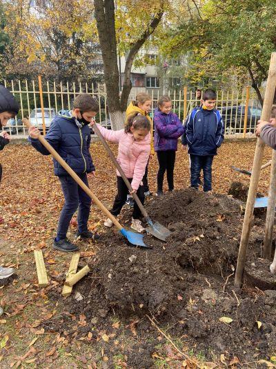 """Мащабната инициатива част от кампанията """"Моето зелено училище"""" в 40 СУ - Изображение 2"""