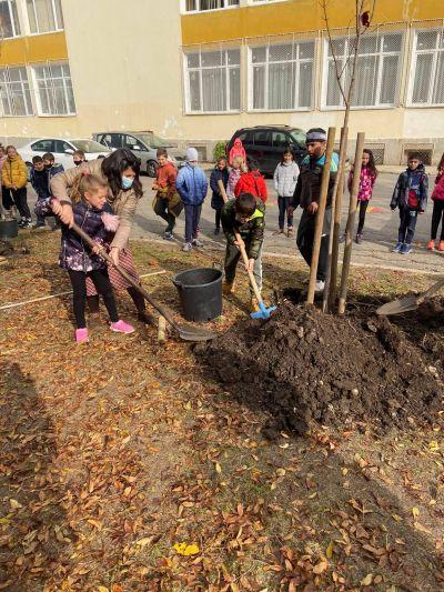 """Мащабната инициатива част от кампанията """"Моето зелено училище"""" в 40 СУ - Изображение 3"""